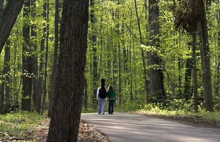 path to romance: Couple Walking In The Forest