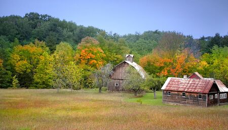 fallcolours: Old Homes By The Colorful Trees