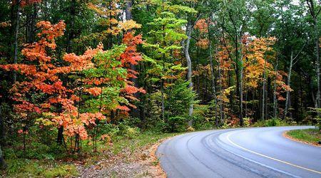 fallcolours: Beautiful Autumn Drive Stock Photo