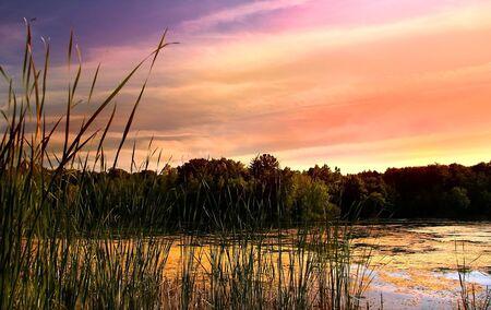 Scenic Lake In Michigan Stock Photo - 3573629