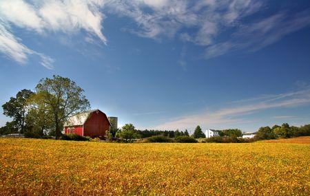 경치 좋은 농장 풍경 스톡 콘텐츠