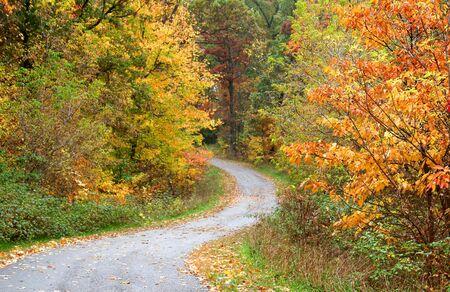 Scenic Bike Trail photo
