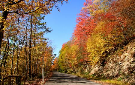 allegheny: Scenic route through Allegheny state park in autumn time Stock Photo