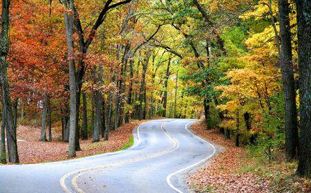 allegheny: Autumn Drive