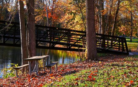 allegheny: Autumn time in Allegheny national forest Pennsylvania