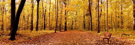 Panorama d'automne Banque d'images - 3821718