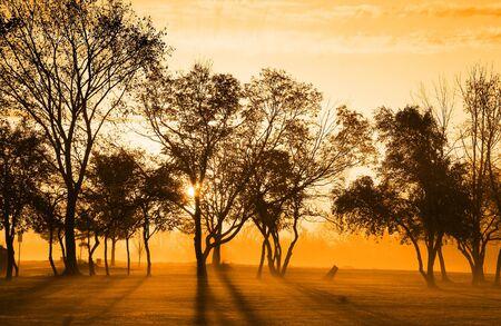 Early Morning Sun Light Reklamní fotografie