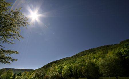 glen: Summer Scene