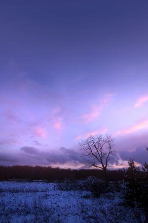 michigan snow: Scenic winter landscape in the evening time