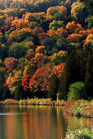 allegheny: Scenic Autumn Landscape