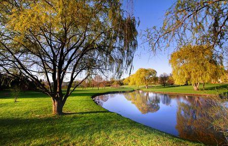 Spring Landscape 写真素材