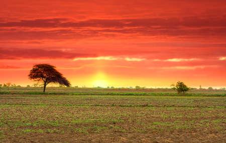 Indian Landscape Stock Photo - 4860673