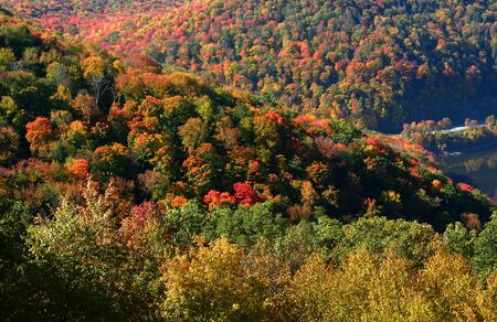 allegheny: Colorful Autumn Landscape