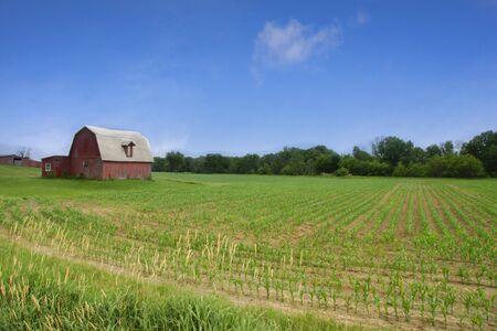 Scenic Landscape Stock Photo - 5382698