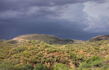 Desert landscape on a cloudy day Stock fotó
