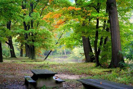 Bright autumn colors Stock Photo - 5543083