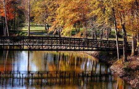 Autumn in Michigan photo
