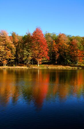 landscape: Autumn landscape Stock Photo
