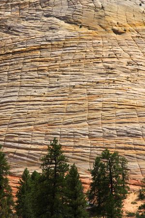 red rock formation in Zion photo