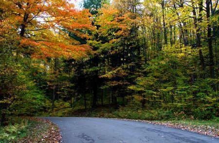 fallcolours: Driving through fall colors Stock Photo
