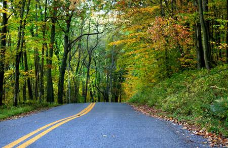 Autumn drive Stock Photo - 5575842