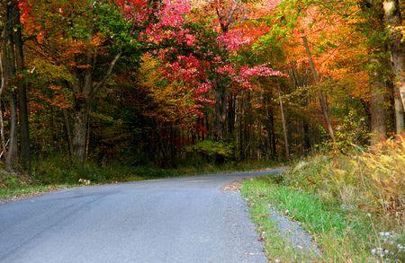 Autumn drive Stock Photo - 5575843