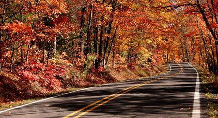 Autumn drive Stock Photo - 5579747