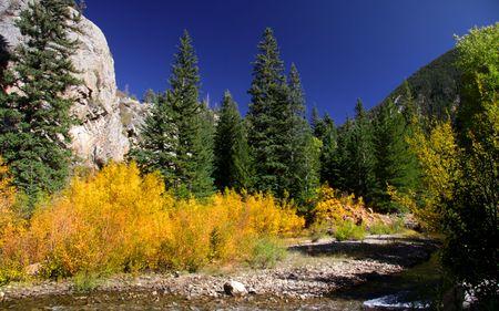 Fall in Colorado photo
