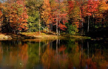 fallcolours: autumn landscape in Pennsylvania