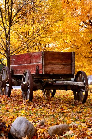 Antique Wagon and autumn colors Imagens