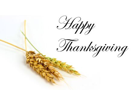 happy holidays: Happy Thanksgiving Stock Photo