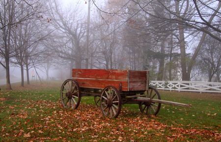 Cart in the mist