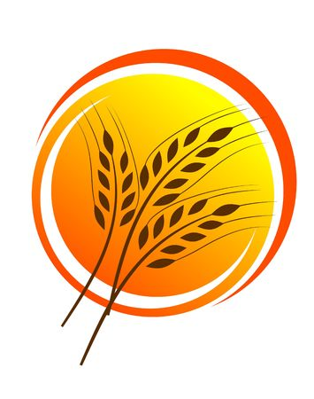 clip art wheat: Wheat straw illustrtion