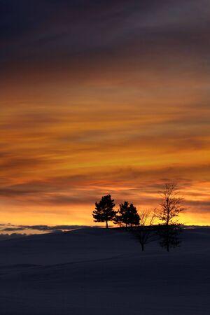 Winter evening sky photo