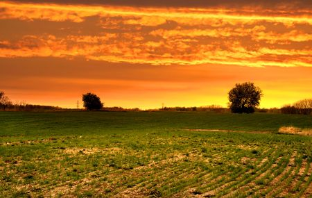 Farm landscape in evening time of spring photo