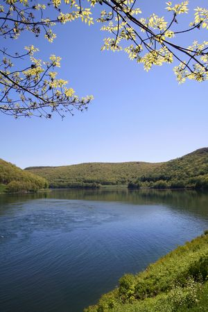 allegheny: Allegheny national forest