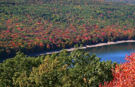 allegheny: Allegheny national park