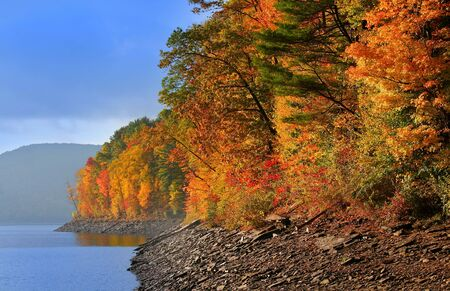 Allegheny national forest Stock Photo - 7981798