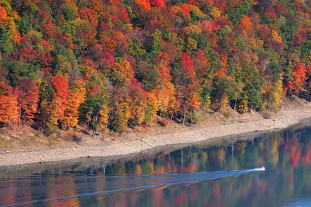fallcolours: Allegheny national forest of Pennsylvania Stock Photo