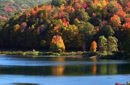 allegheny: Scenic landscape in Allegheny state
