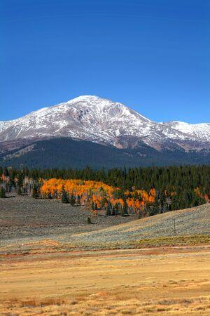autumn colour: Mount Elbert in Colorado Stock Photo