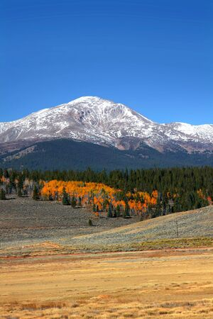 colorado mountains: Mount Elbert in Colorado Stock Photo