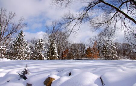 Scenic winter landscape on a cloudy day in Michigan Stock Photo - 8485091