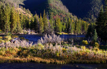 Yellowstone national park in autumn time photo