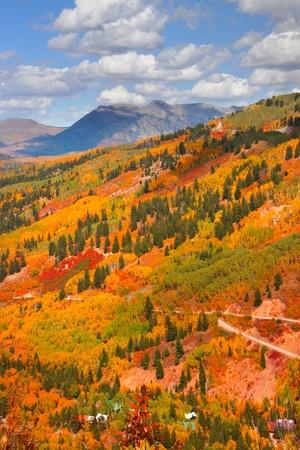 Autumn scene in Colorado photo