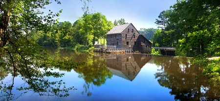 Panoramic view of Yates mill state park