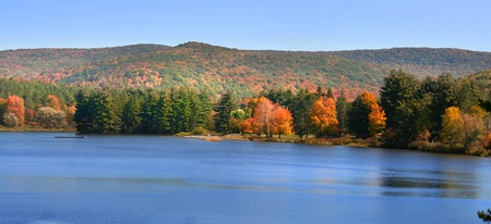 allegheny: Panoramic view of scenic autumn landscape in Allegheny national forest