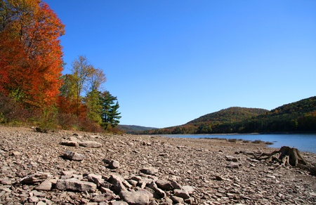 allegheny: Allegheny river shore and colorful fall trees