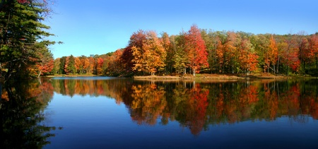 allegheny: Panoramic view of Allegheny state park in Autumn time