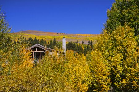 vacation home: Vacation home in the Aspens